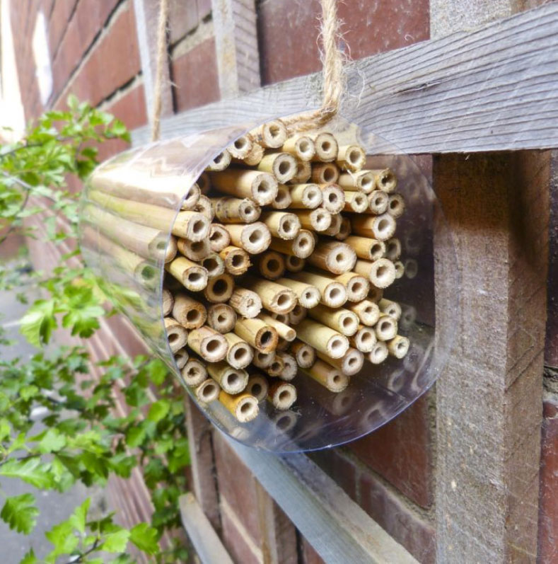 Bee hotel completed